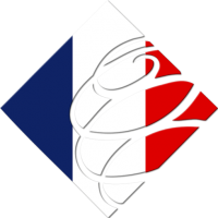 Financial Advisers in France