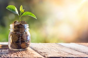 How to improve your income and investment return.